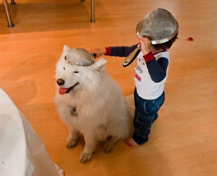 collindar dog.jpg