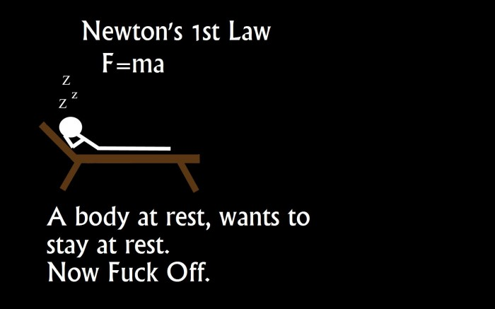 Newton's 1st law - now fuck off.jpg