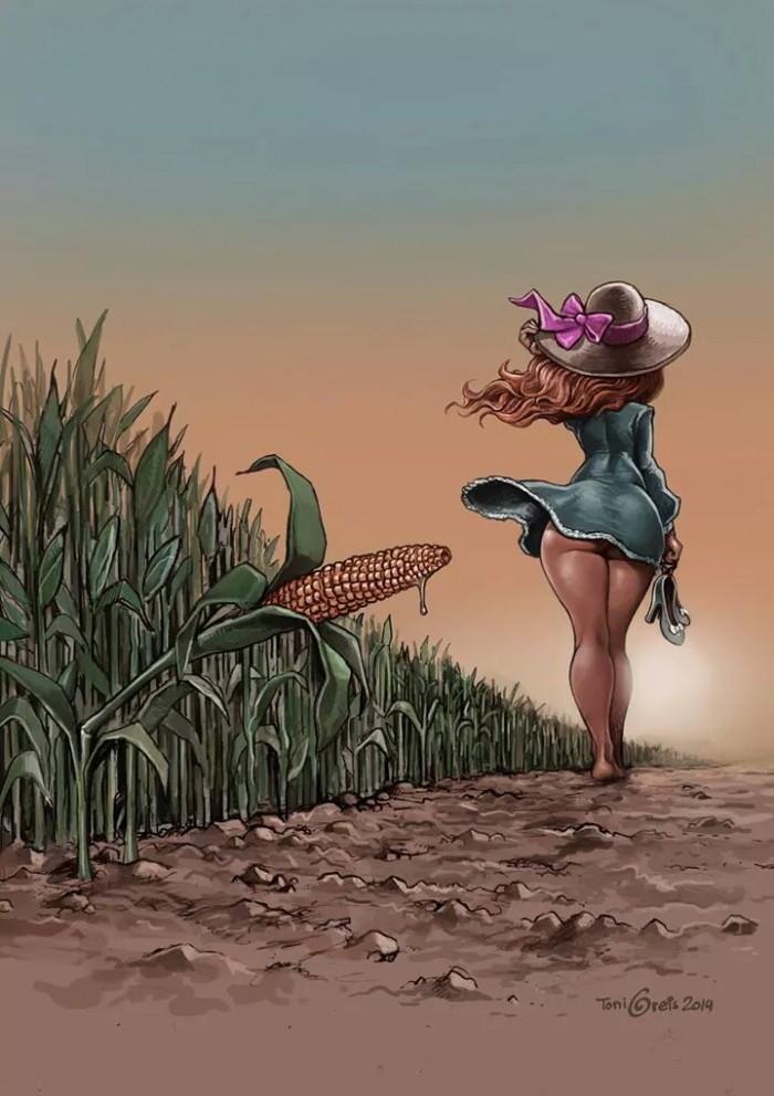 used corn.jpg