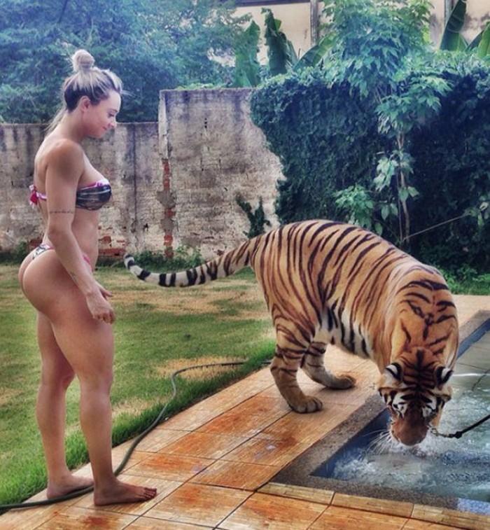 Bikini Tiger Time.jpg