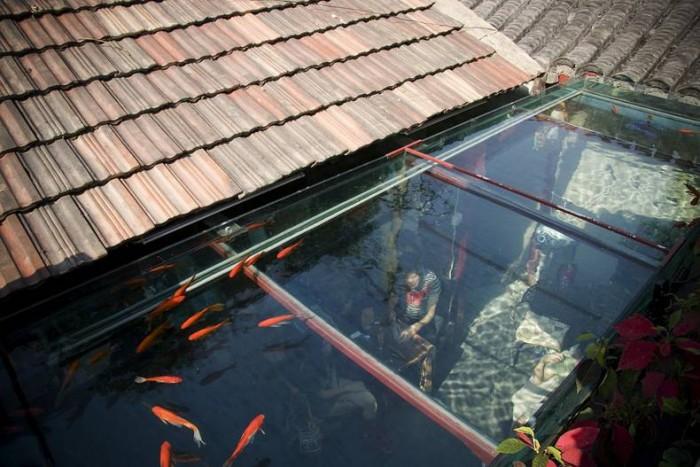 Under water cafe.jpg