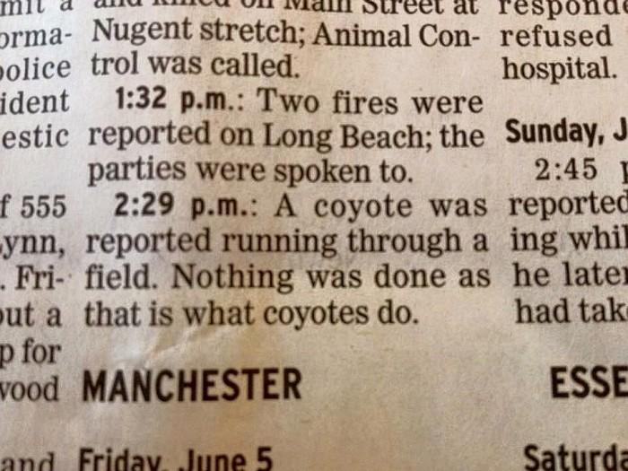 Nature Crime Report.jpg