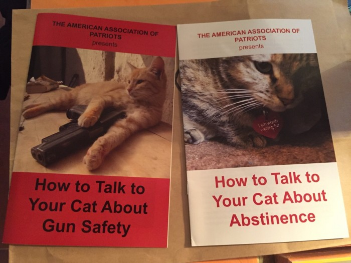 how to talk to your cat.jpg