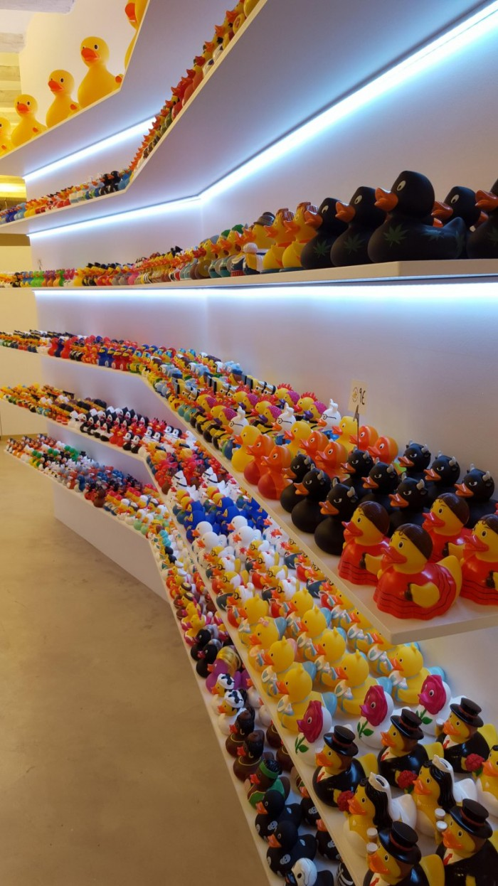 A massive Duck Collection.jpg