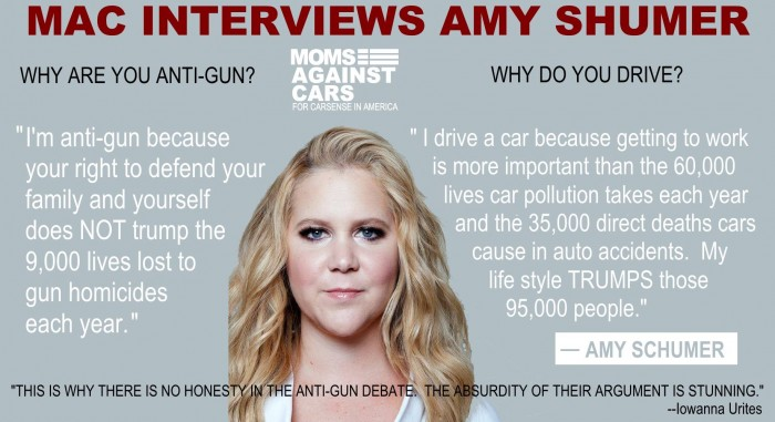 Amy Shumer is anti-gun.jpg