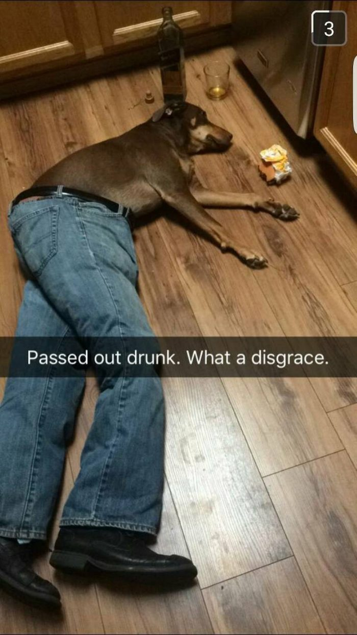 passed out drunk.jpg