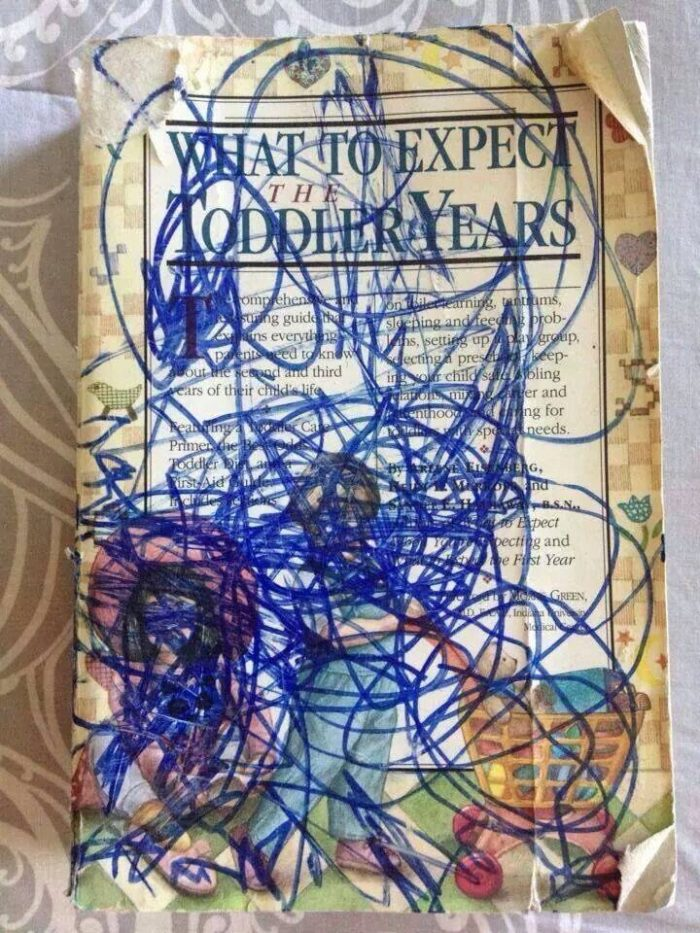 what to expect in the toddler years.jpg