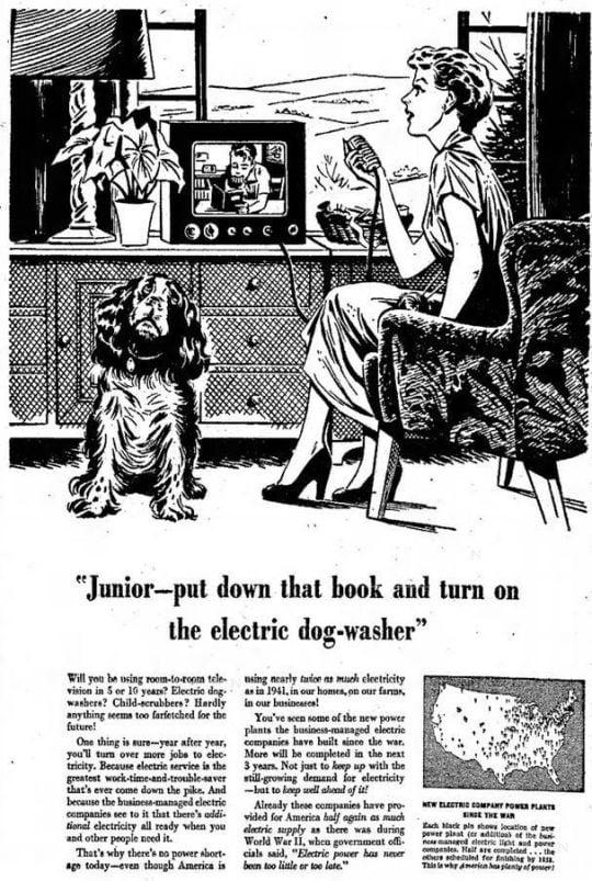 ELECTRIC DOG WASHER