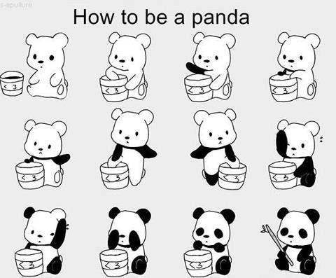 Panda.jpg (32 KB)
