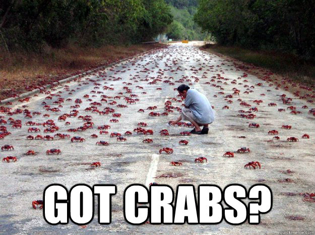 3r92t4 Got Crabs? quickmeme Meme Humor