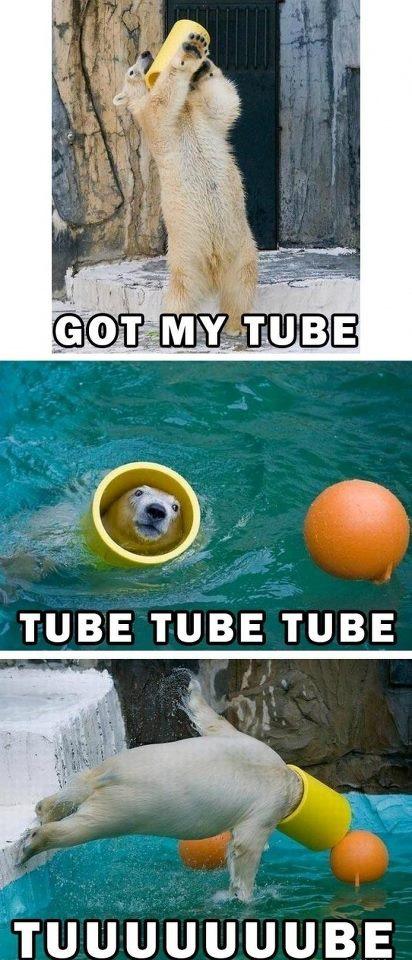 tube.jpg (86 KB)