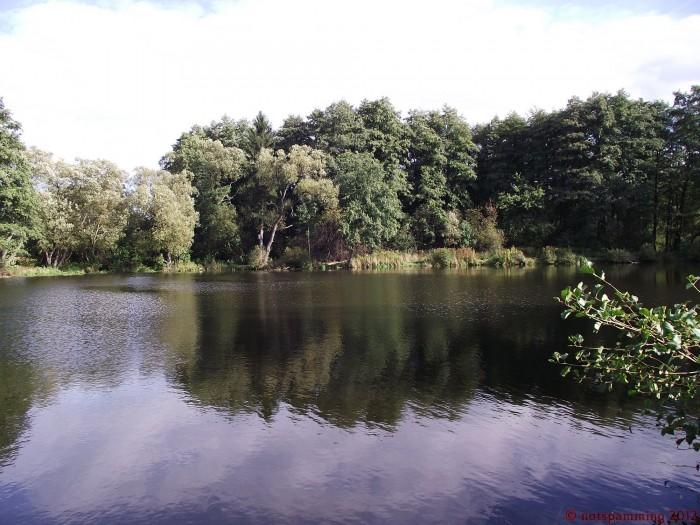 water1.jpg (604 KB)