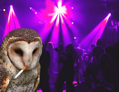 owl nightclub Owl in a nightclub smoking smoking owl nightclub mssql dev null