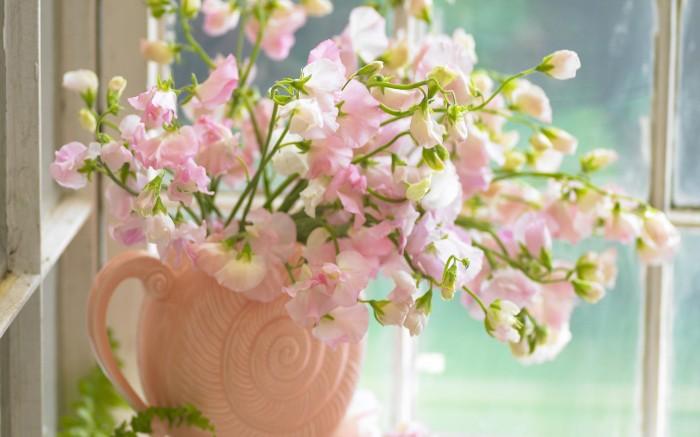 flowers_pink_spiral_vase_desktop_1920x1200_hd-wallpaper-809954.jpg (290 KB)