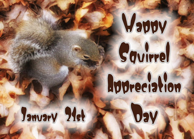 Squirrel Appreciation Day Squirrel Appreciation Day Jan 21 tree squirrels Squirrel Appreciation Day squirrel nuts mlk jr mlk fuzzy furry Day cute Appreciation adorable