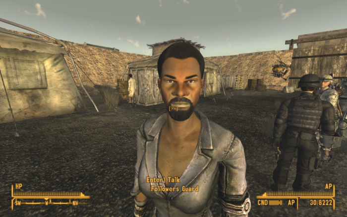 hirsutism too much 700x437 Fallout: New Vegas Gaming funny Fallout New Vegas bug