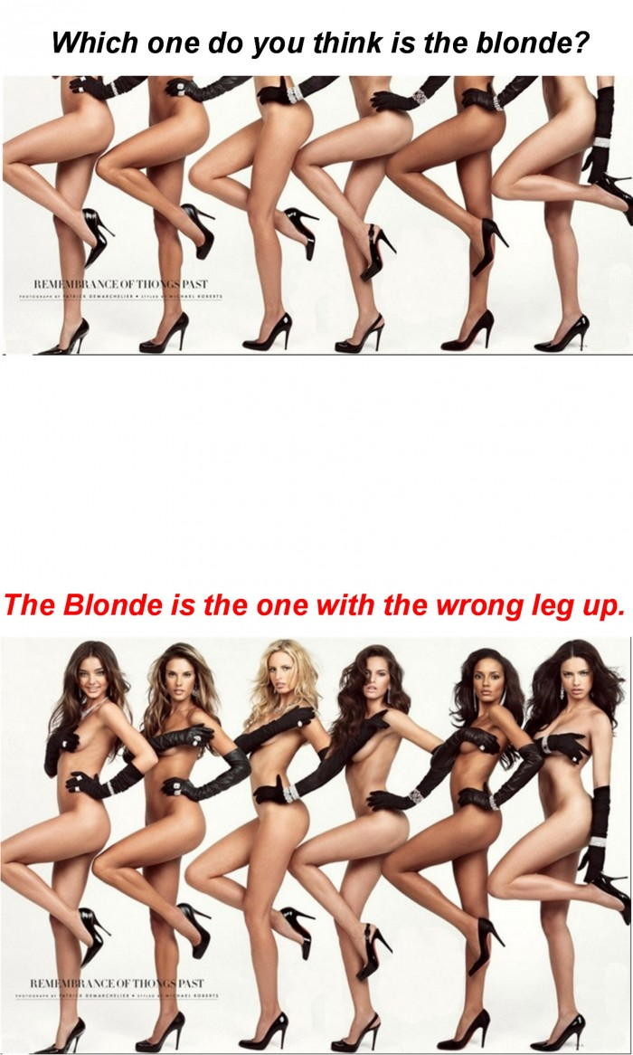 Which-is-the-Blonde.jpg (577 KB)