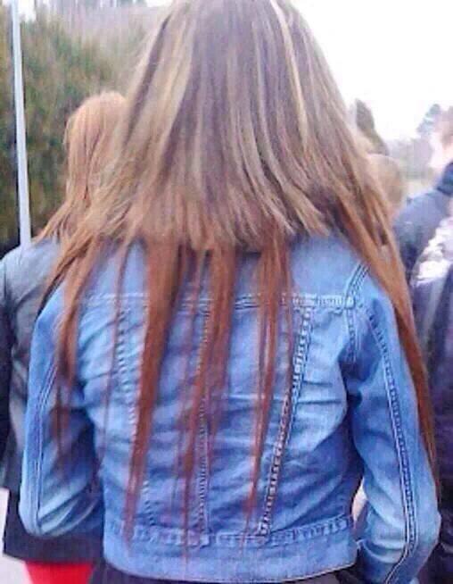 hair.jpg (46 KB)