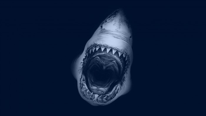 Huge-Toothy-Shark.jpg (559 KB)