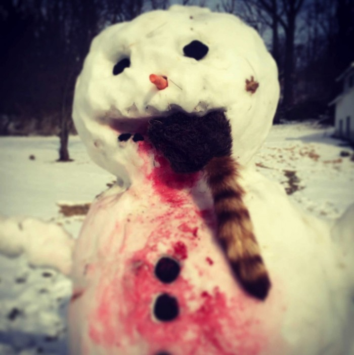 snowraccoon.jpg (197 KB)