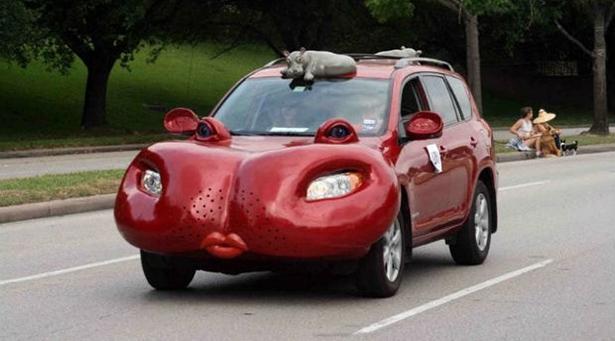 animal_cars_020_11212013.jpg (119 KB)