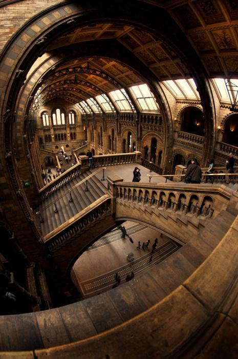 museum.jpg (235 KB)