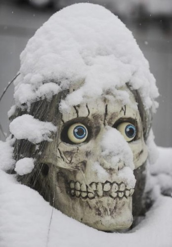 20091028__snow.skull~p1.jpg (49 KB)