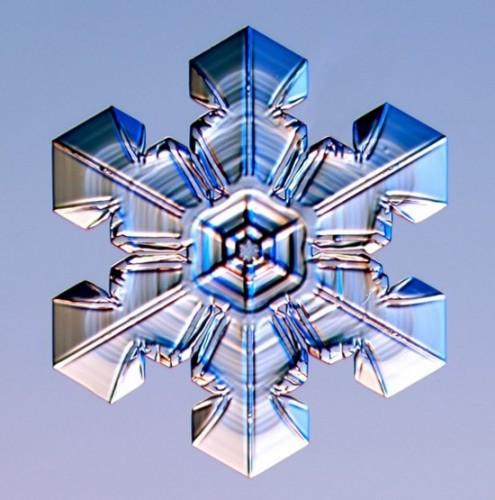 snowflake4.jpg (70 KB)