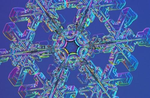 snowflakes.jpg (103 KB)