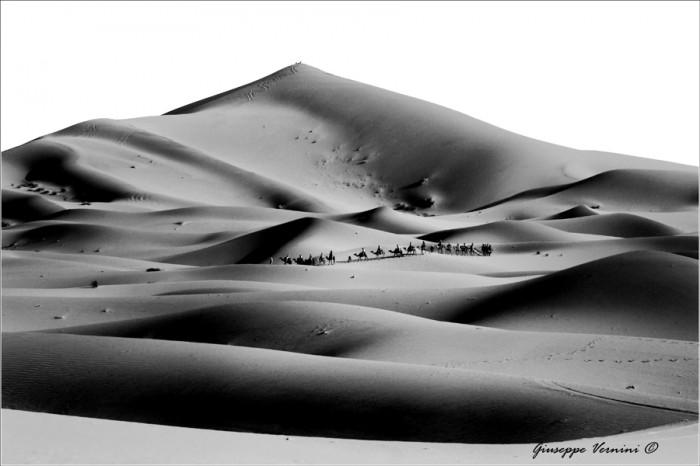Dunes3.jpg (223 KB)