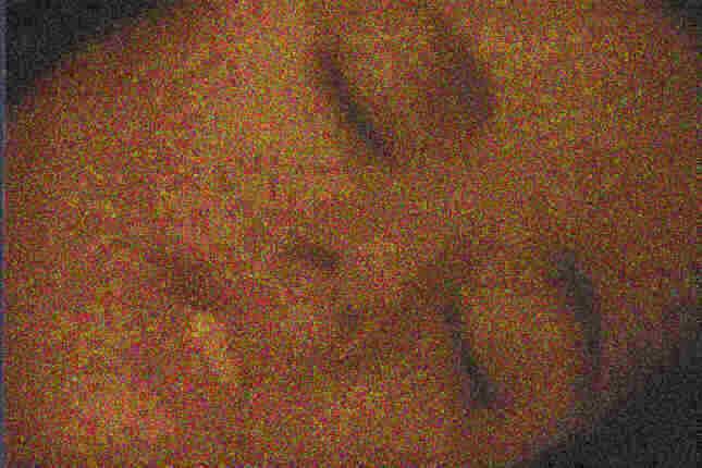 poe1.jpg (27 KB)