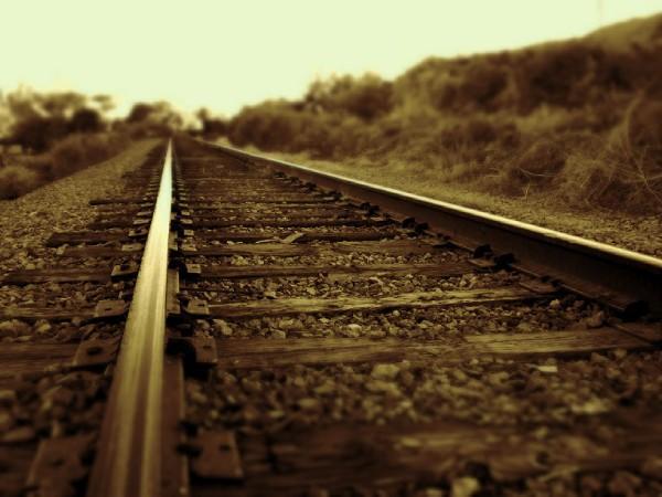 track.jpg (38 KB)