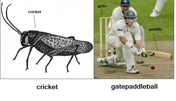 CricketChart 700x405 F You, England