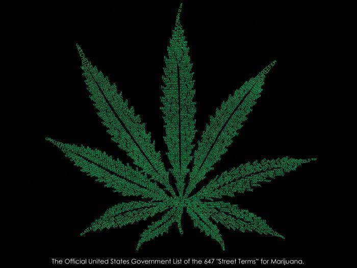 weed.jpg (1 MB)