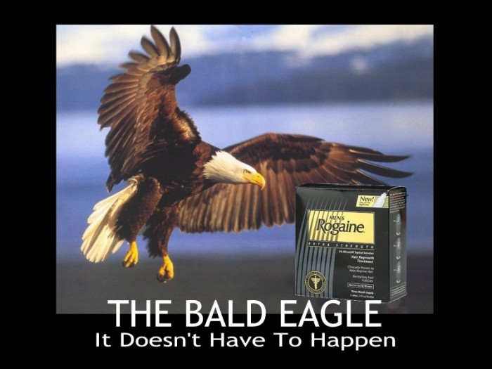 Bald Eagle 700x525 Bad Eagle: It Doesnt Have To Happen