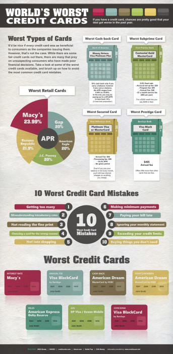 27721 10150181796415635 622995634 12514567 6121955 n 343x700 Worlds worst credit cards
