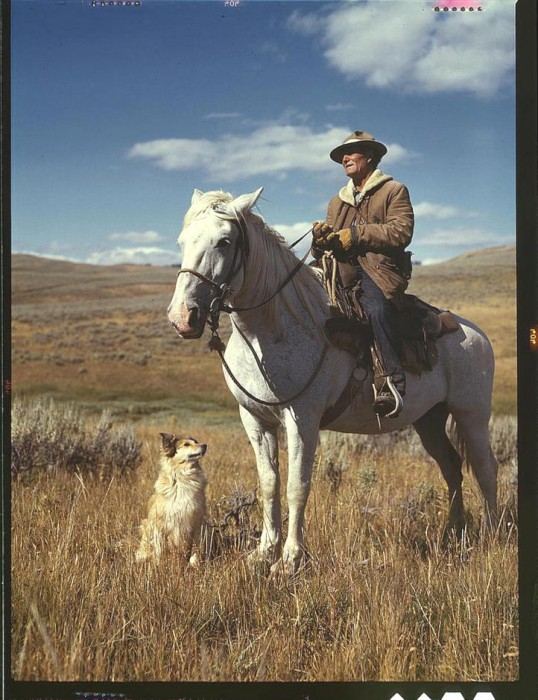 Shepherd with his horse and dog on Gravelly Range Madison County, Montana, August 1942. 538x700 America circa 1939 1943