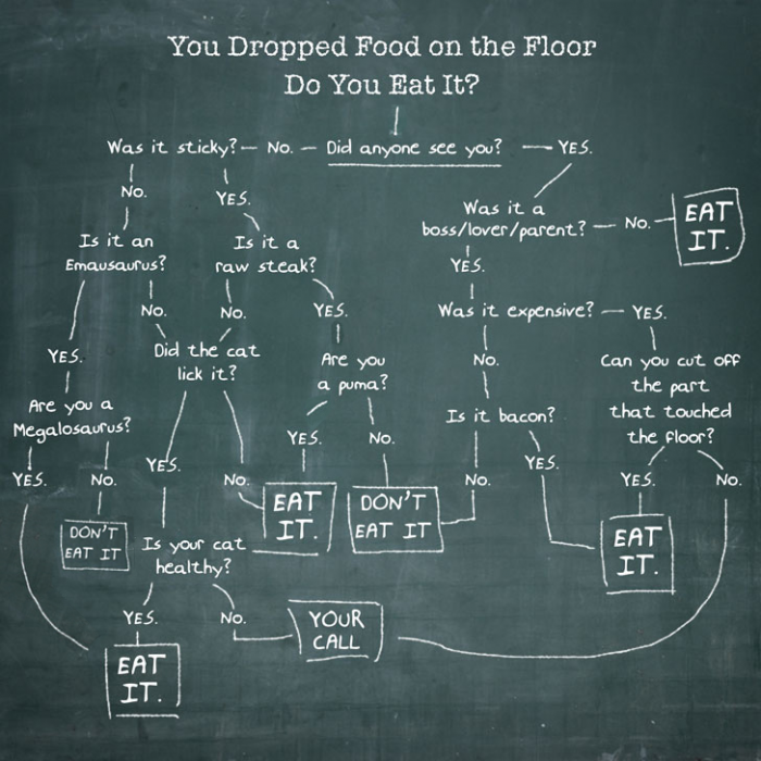 floor 700x700 Do you eat it? Science! Humor Food