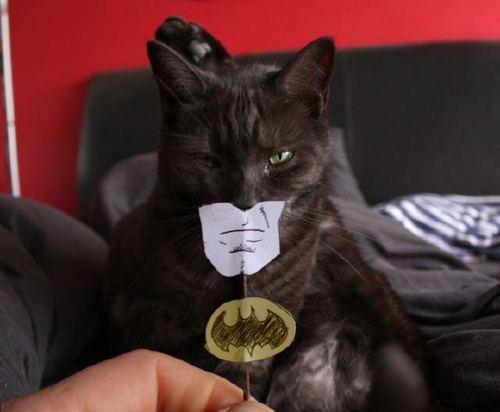 batman.jpg (22 KB)