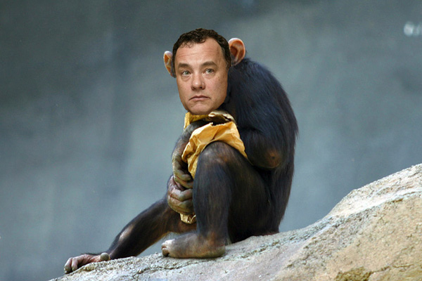 chimpyhank Tom Hanks in the Last Monkey