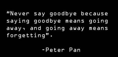 peter_pan.jpg (14 KB)