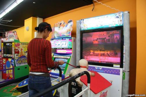 dog_walking_arcade_game.jpg (69 KB)