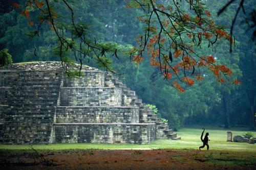 photo_lg_honduras.jpg (70 KB)