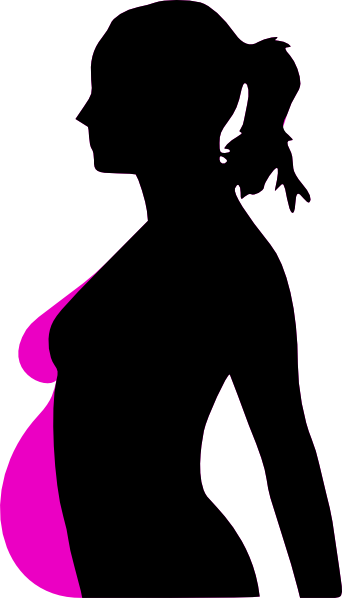 pregnancy silhouet Pregnancy icon Sexist Humor