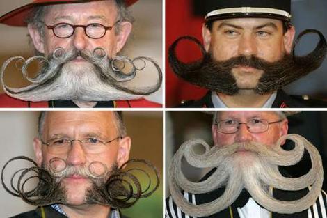 beards_wideweb__470x313,0.jpg (28 KB)