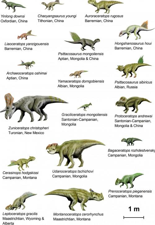 CeratopsiaI_BW2.jpg (839 KB)