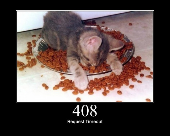 6508023179 bab3eebce8 b 700x560 HTTP Status Cats  Motivational Posters lolcats Humor Computers
