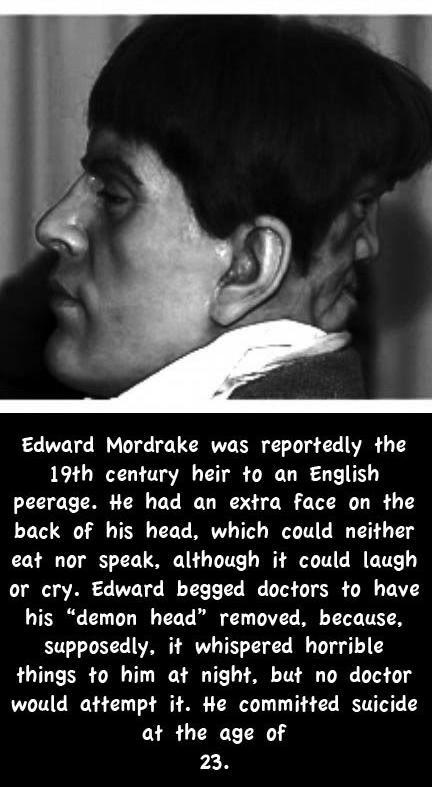 Edward.jpg (58 KB)