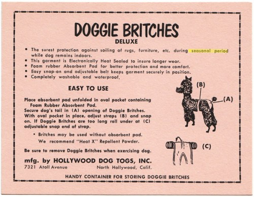 doggieBritches1.jpg (433 KB)