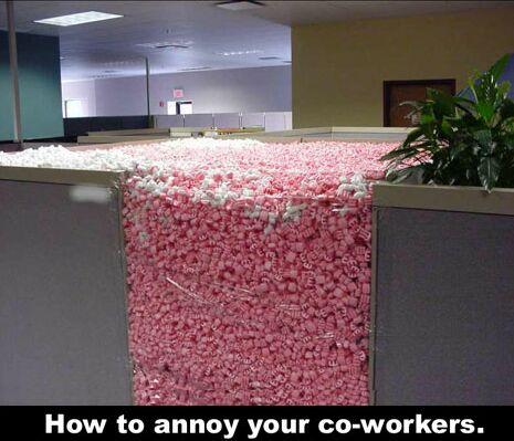 cubicle.jpg (37 KB)